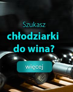 Poznaj najlepsze chłodziarki do wina
